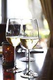 Beverage Academy: Wine 101